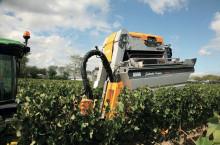 Pellenc 8090, прикачен комбайн за грозде